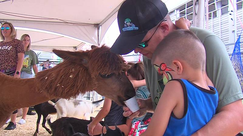 The Permian Basin Fair and Expo offers a number of forms of entertainment for families.