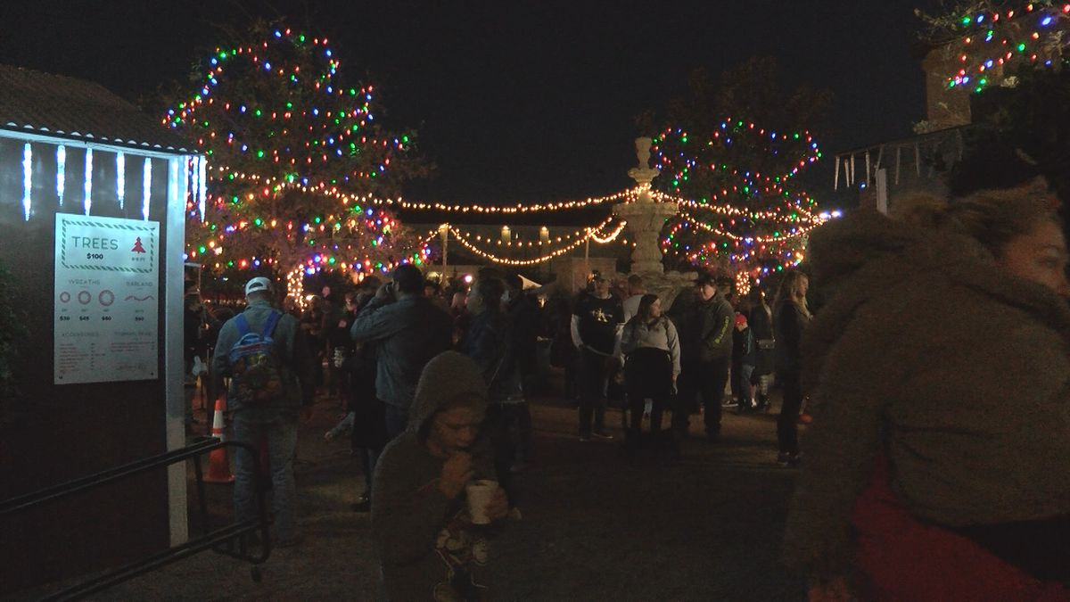 The Parks Legado Town Center has spent the past few weekends hosting a Christmas tree market.