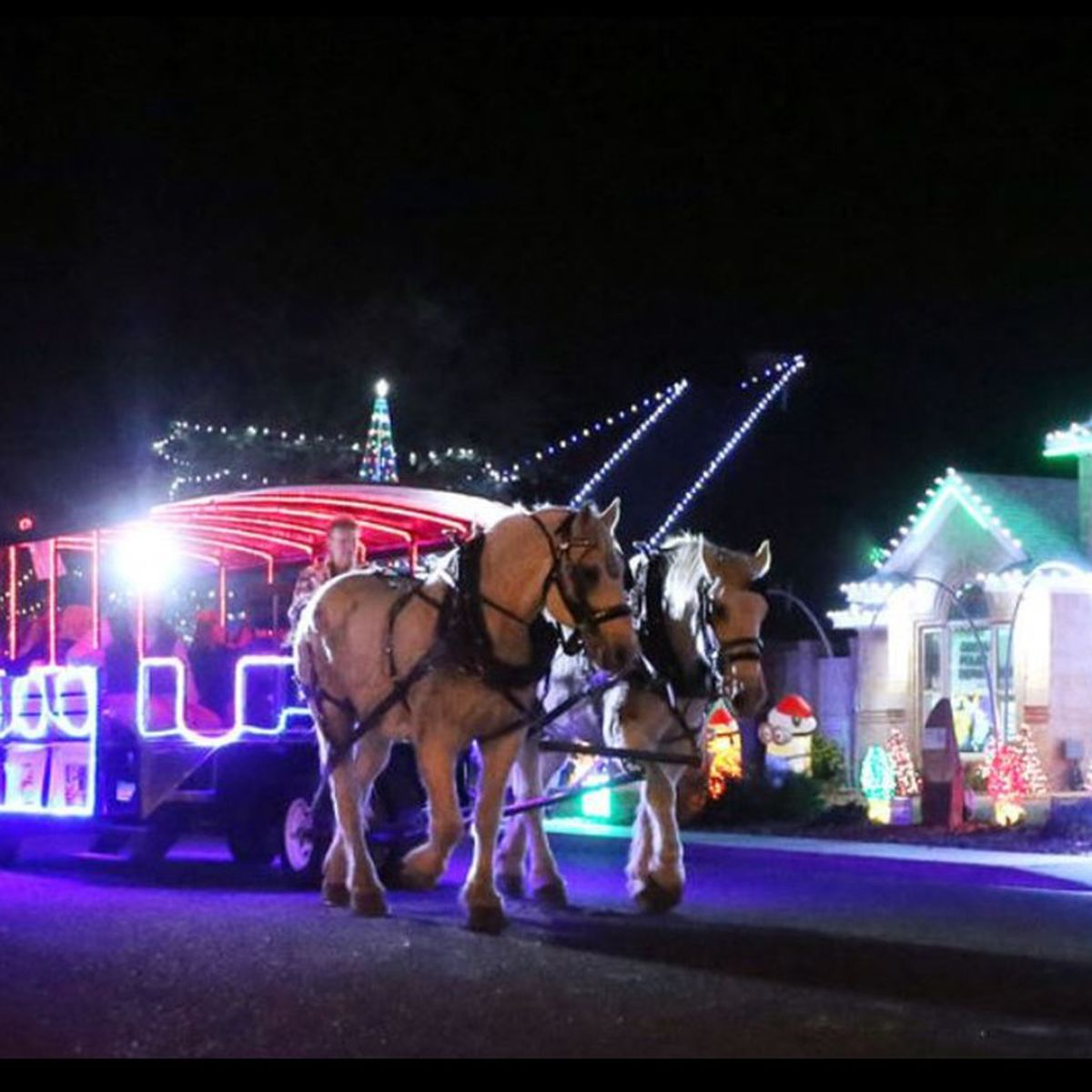 Christmas Carriage Rides Coming To West Texas