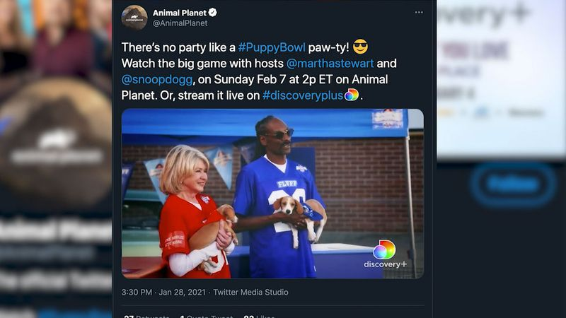 Snoop Dogg and Martha Stewart will co-host the 2021 Puppy Bowl, which will air on Animal Planet...