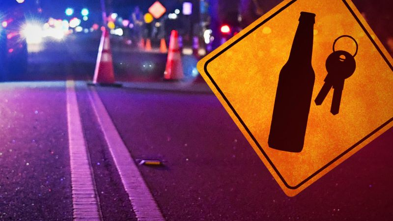 This is the second year the agencies have teamed up for the Joint Agency New Year's Eve DWI...