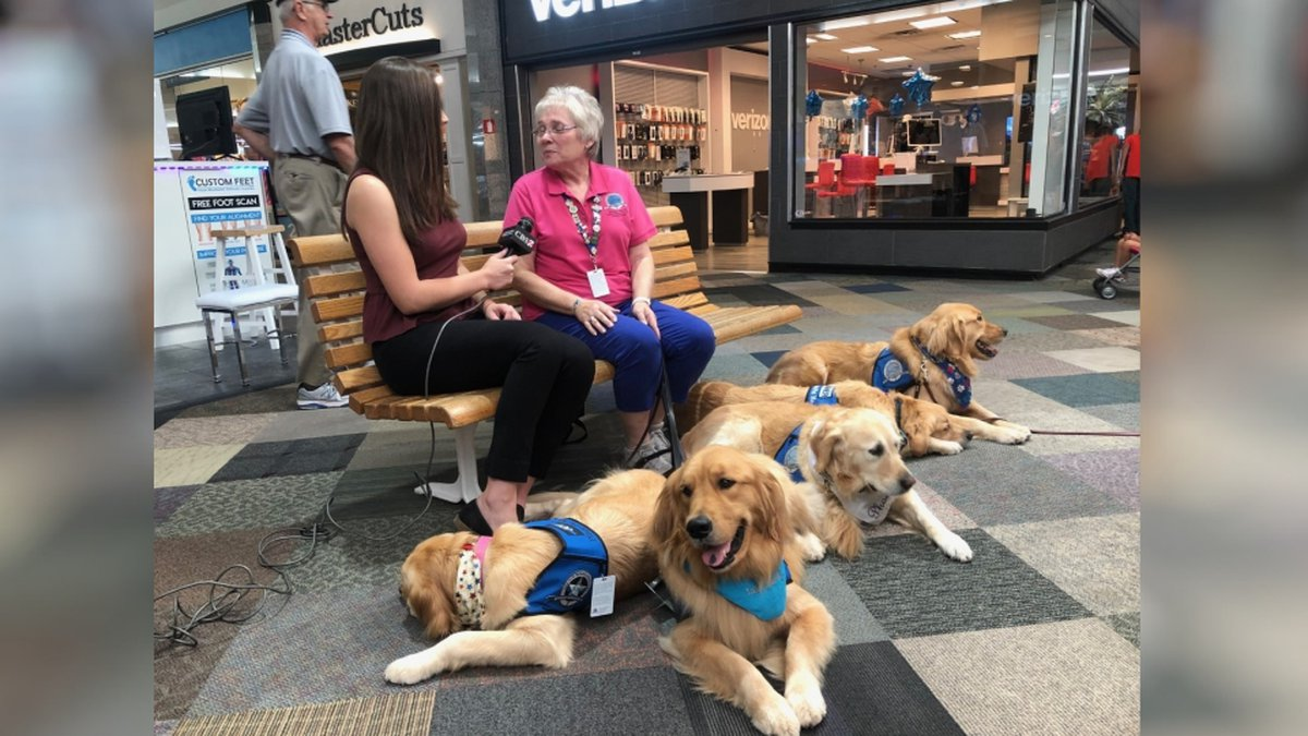 Several of the LCC K-9  Comfort Dogs will be in Odessa for the next few days providing support.