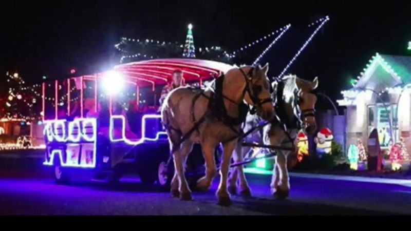 Junior League of Odessa will host horse drawn carriage rides to view Christmas lights