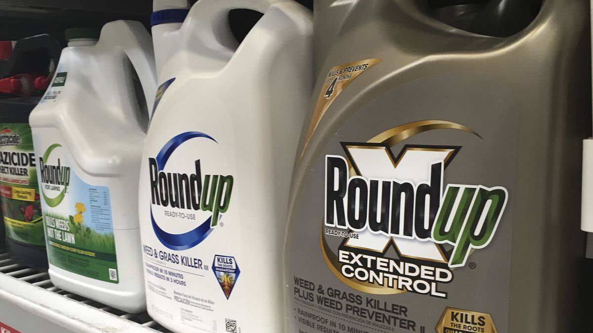Bayer is paying up to $10.9 billion to settle a lawsuit over subsidiary Monsanto's weedkiller Roundup.