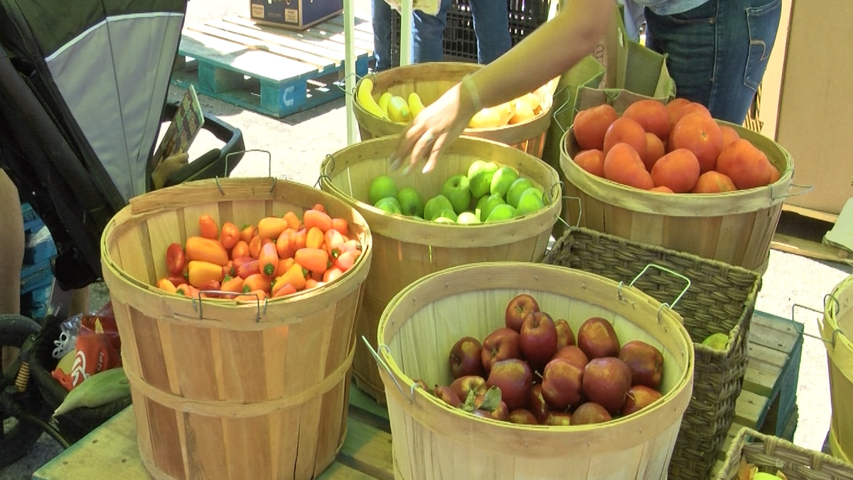 Craig Stoker with the food bank said the Kids Farmers Markets introduces children of all ages...