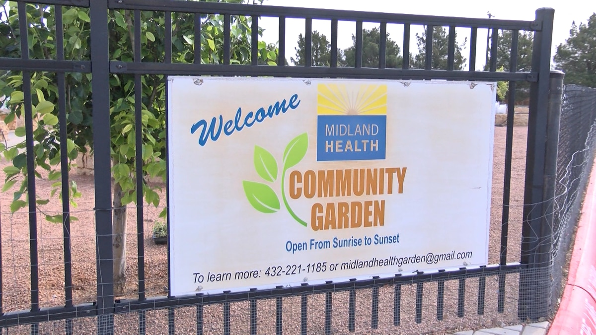 The community garden will serve as a breeding area for Monarchs, as well as gardening plots...