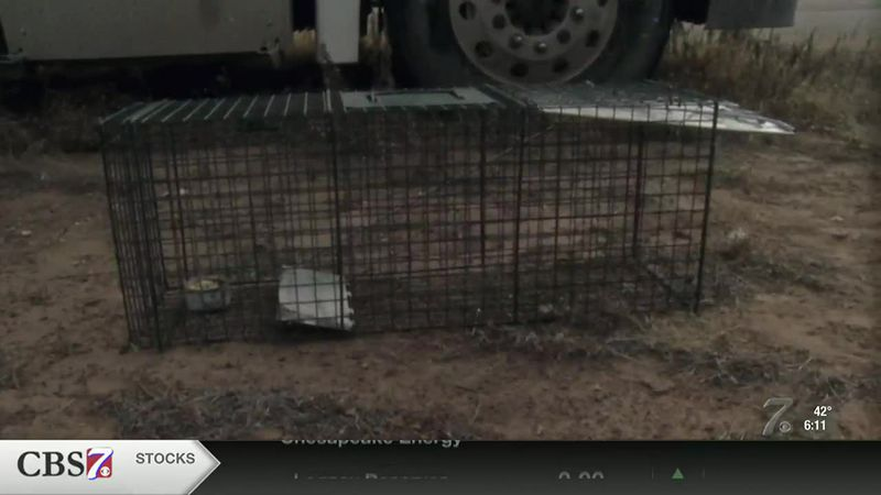 West Odessa residents concerned after reports of rabid fox