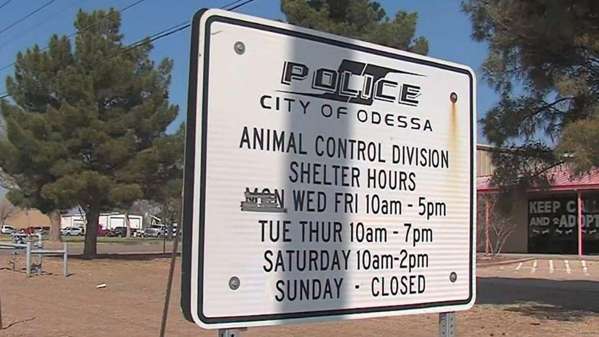 The Odessa Animal Shelter.