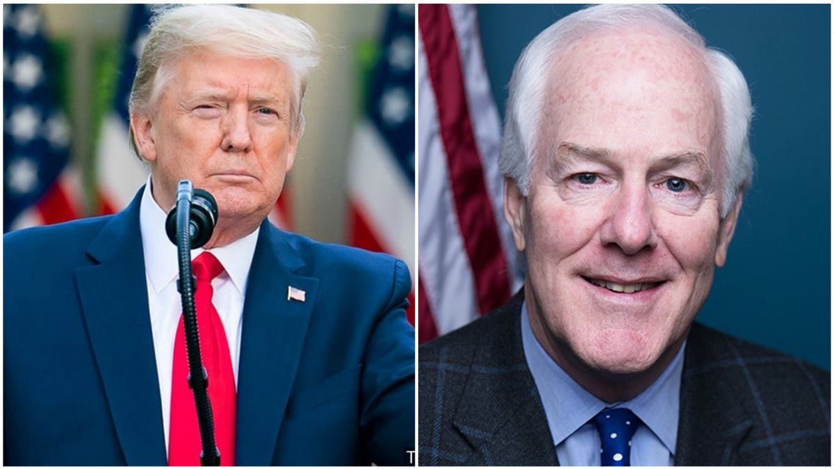 President Donald Trump and Senator John Cornyn both came away with wins in Texas on Tuesday...